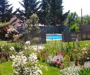 Jardin piscine 9