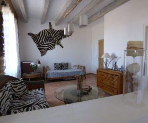 mas-asvin-suite-zebre2